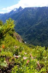 Day 2 of El Bolsón trek